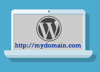 use your own domain on self-hosted WP sites